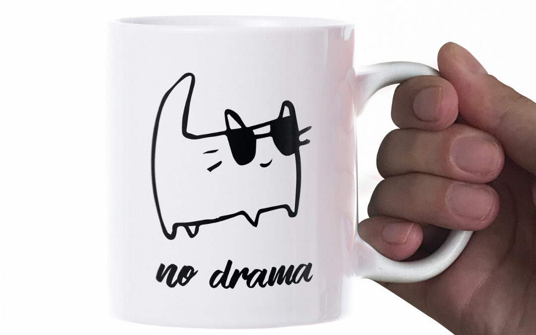 No Drama Discipline